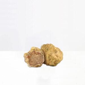 tartufo-bianco-pregiato-tartufeltro-tartufo-alta-qualità-montefeltro