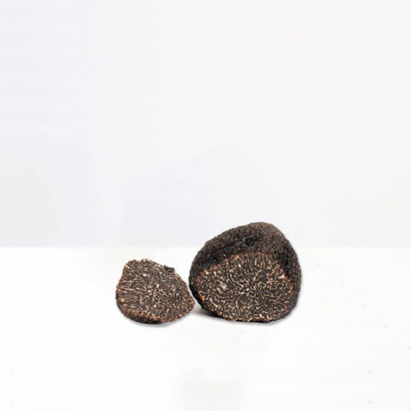 tartufo-nero-pregiato-tartufeltro-tartufo-alta-qualità-montefeltro-1024x1024