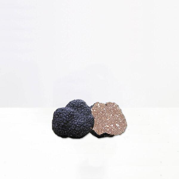 tartufo-nero-uncinato-tartufeltro-tartufo-alta-qualità-montefeltro